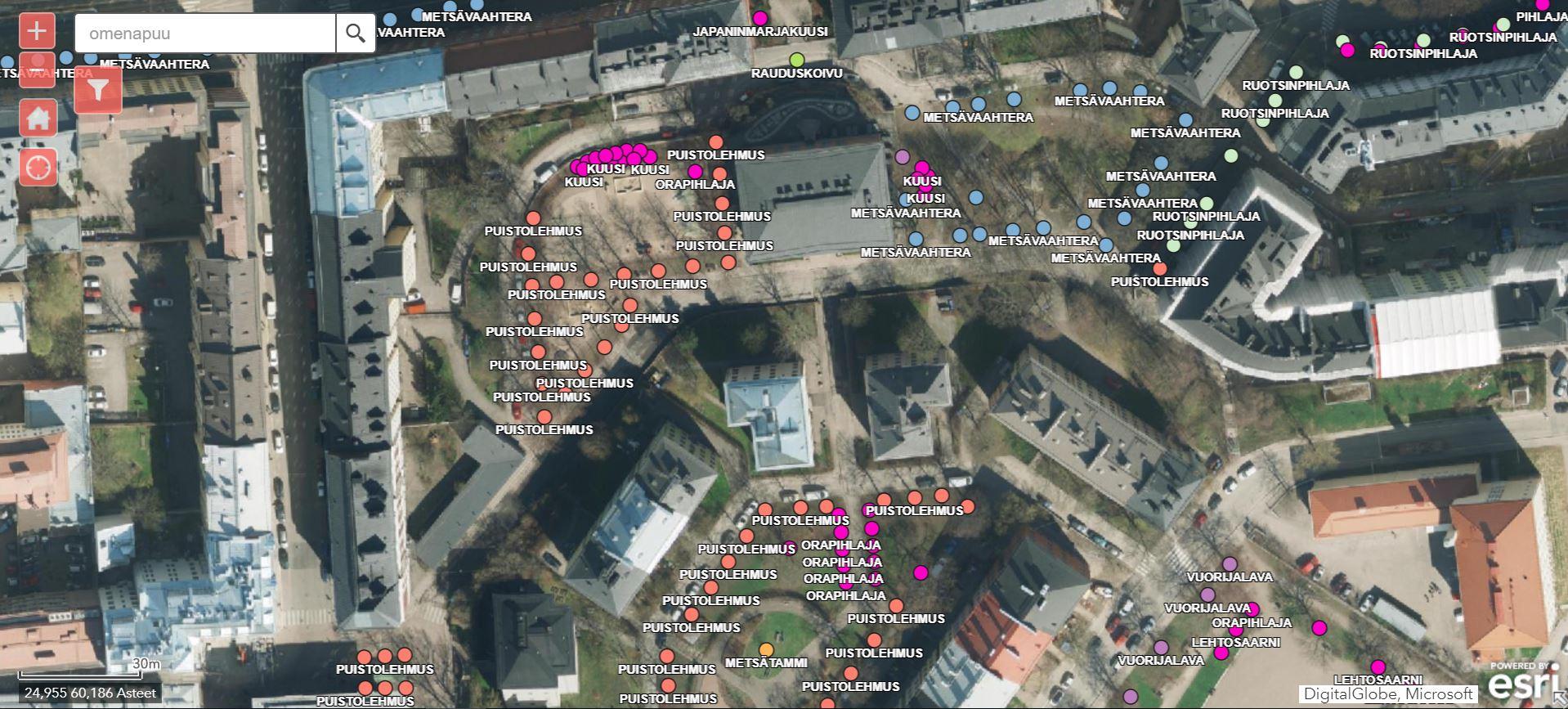 halaa-puuta-helsingin-puut-visualisoituna-kartalle